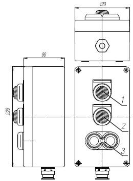 Пост кнопочный взрывобезопасный. Габарит 220х120х90